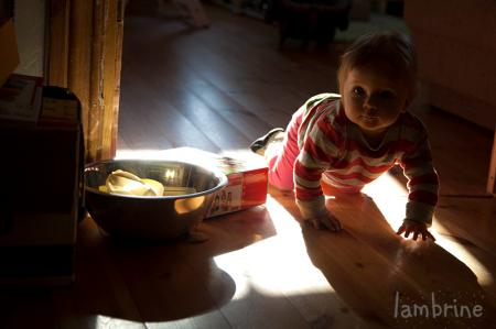 montessori esimesel eluaastal