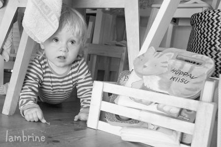 11-kuuse lapse mängud ja tegevused