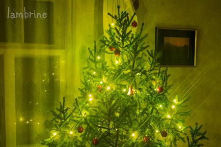 jõulutraditsioonid jõulukuusk