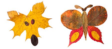 leheloomad lehtedest pildid