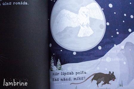 lambrine talve saladused